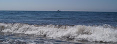 Море Геленджика