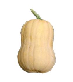 Butternut Matilda