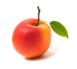 Abricot / Abrikozen