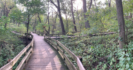 Discover   Fontenelle Forest