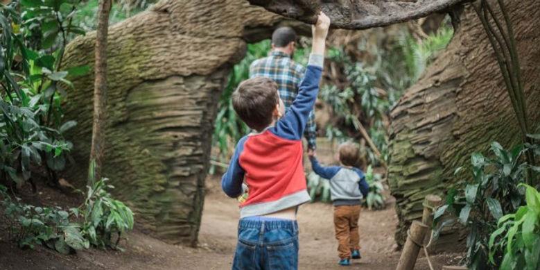 child at omaha zoo