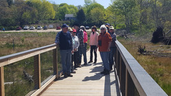 Coonamassett River Project Conservation