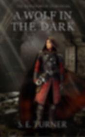 a wolf in the dark.jpg