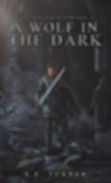 A Wolf in the Dark S E Turner fantasy novel