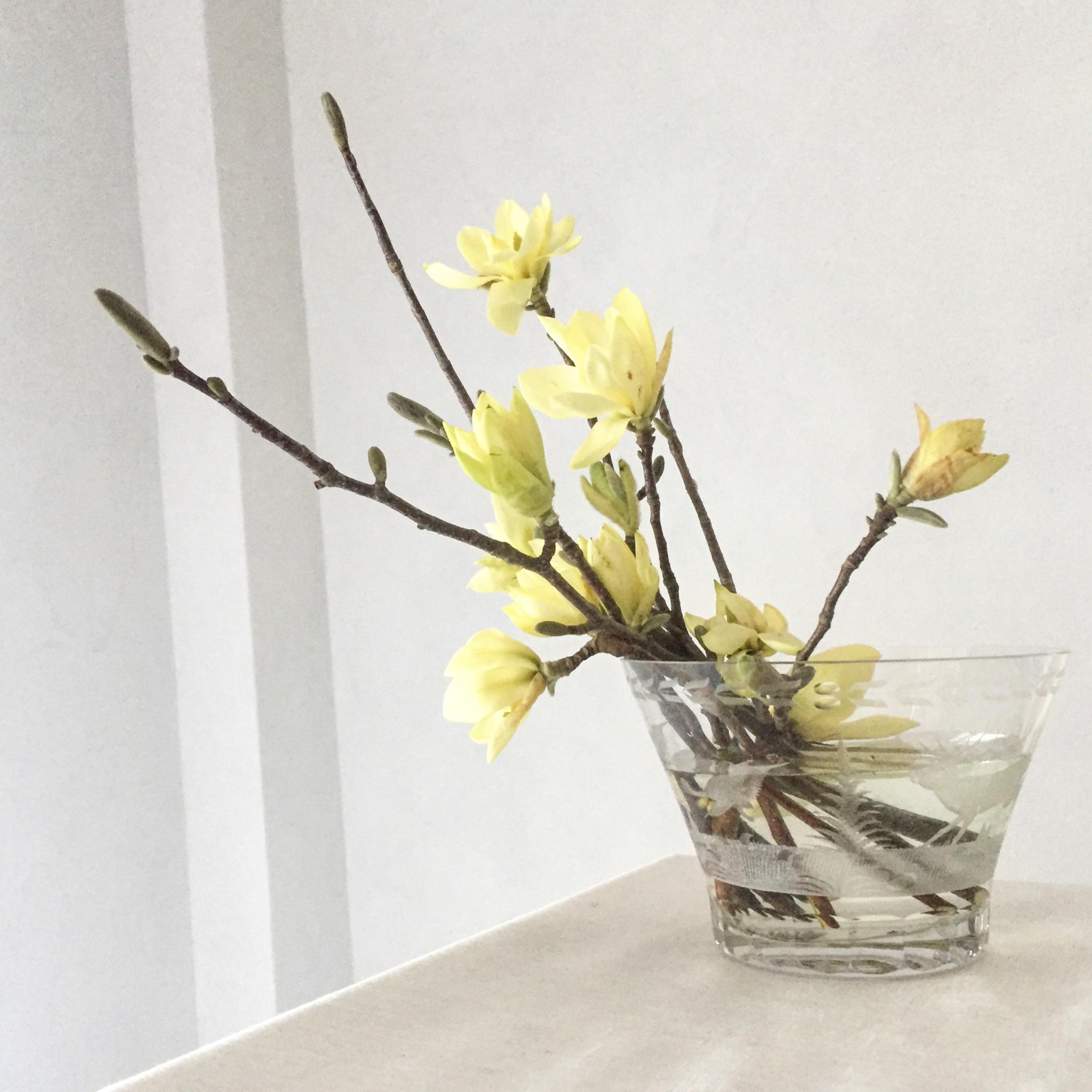 Missi Flowers 11