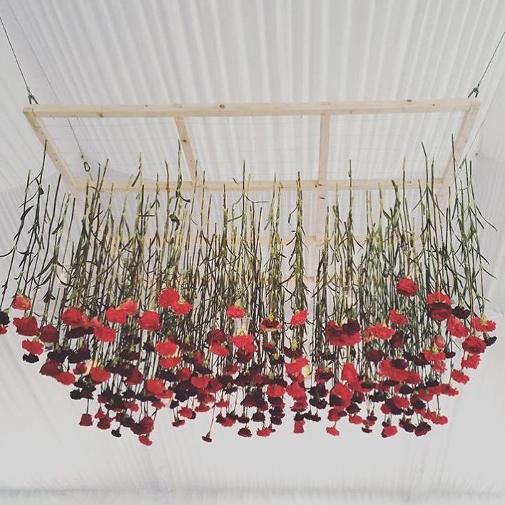 Missi Flowers 39
