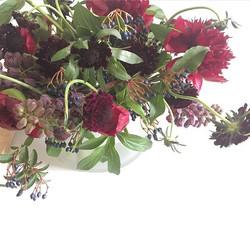 Missi Flowers 9