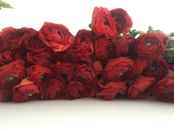 Missi Flowers 51