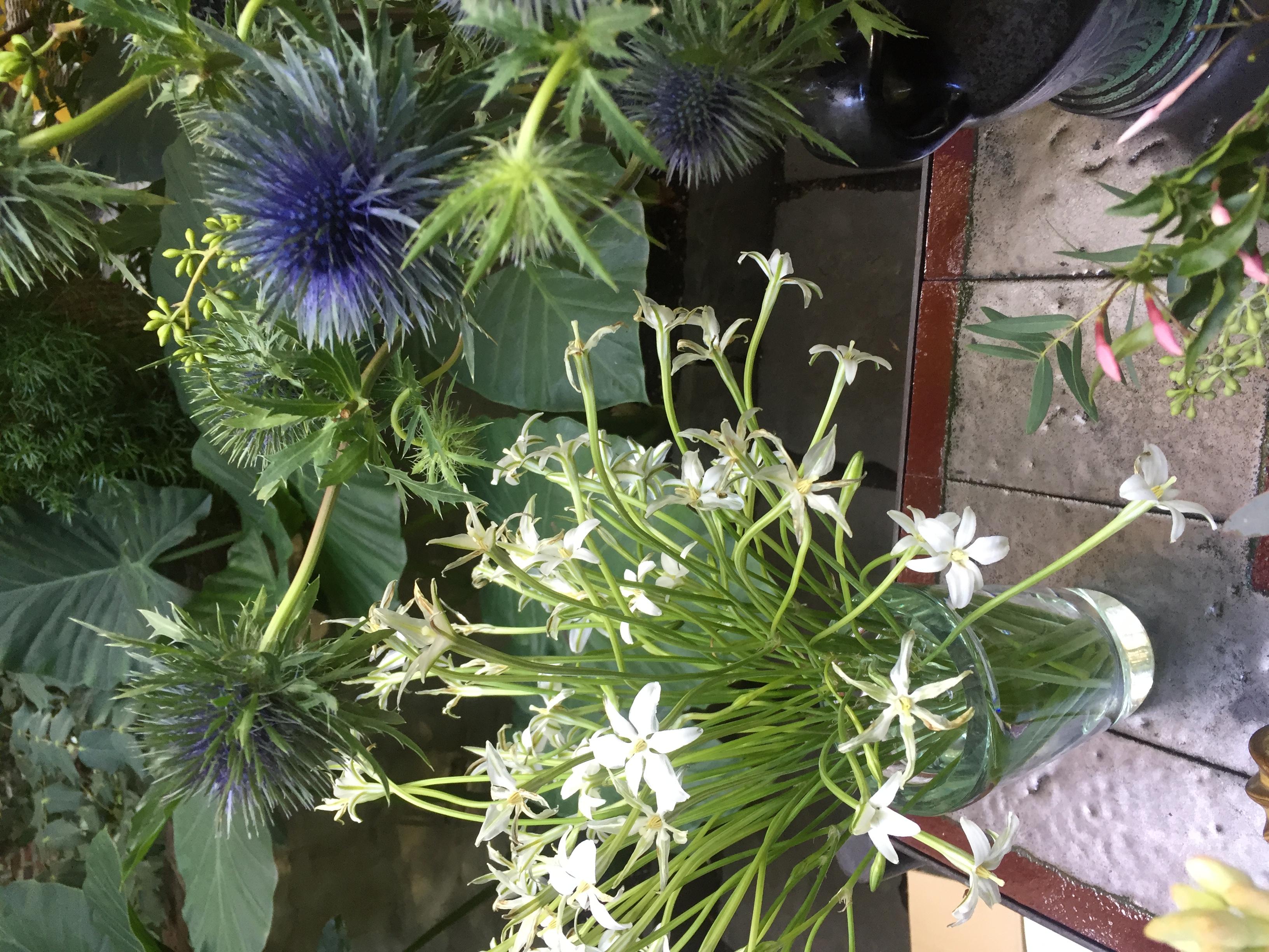 Missi Flowers 44