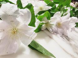 Missi Flowers 3