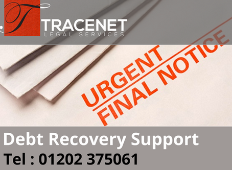 Debt Recovery Support Services | Establishing Facts & Reducing Risks.