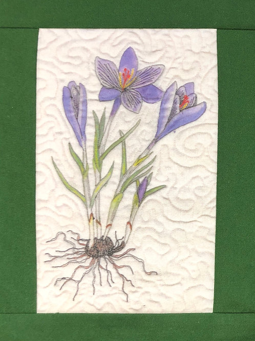 Print of Crocus Botanical Quilt on Muslin
