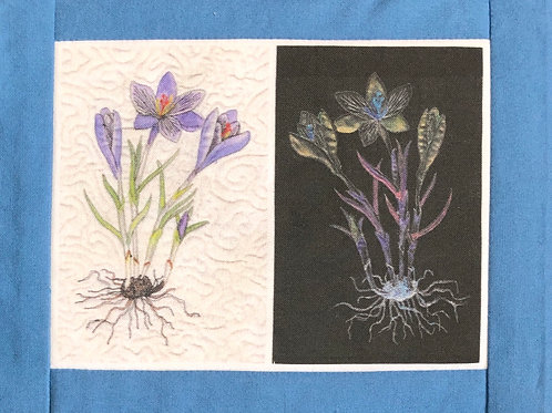Print of Crocus Botanical Quilts