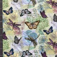 0226 - butterflies