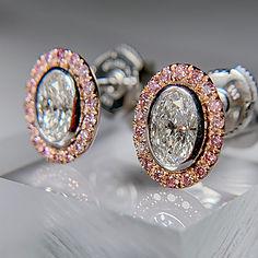 pink halo oval butterfly earrings.jpg