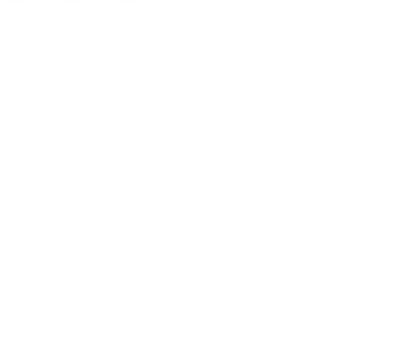kelly-logo-2020-rgb_white.png