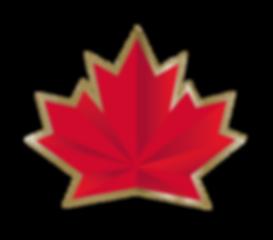 Logo 2018 Olympic Hockey Team