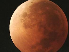 Eclipse de luna para la noche del sábado