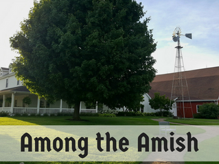 Amongst the Amish