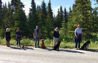 Dow Walkers Teresa Sellers, Bobby Ness and Doxie, Mike Lettis and Rusty, Brigid McCarthy a