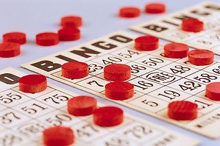 Bingo plain.jpg