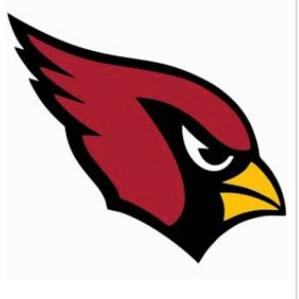 Flag 6U Cardinals T-Shirts