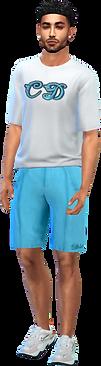tee shorts tq.png