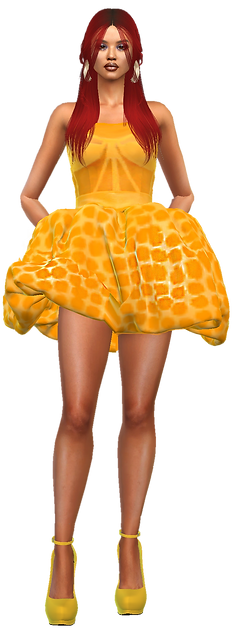 Party dress .3.png