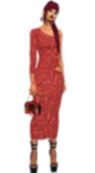 long dress 1.png