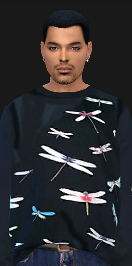 Pullover.png