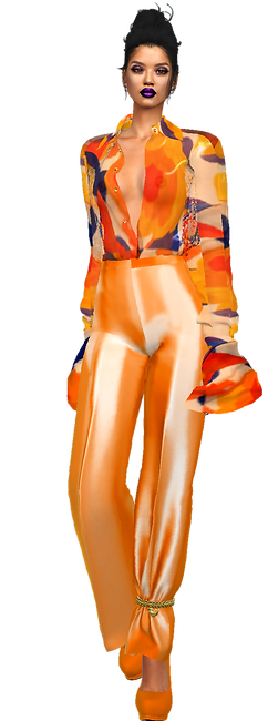 blouse see it 3.png