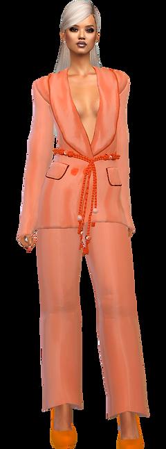 blazer pant suit orgn.png