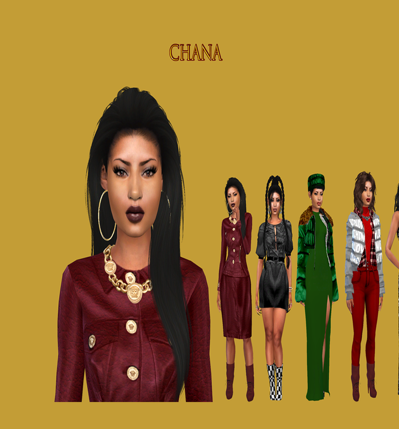 Chana site3x.png