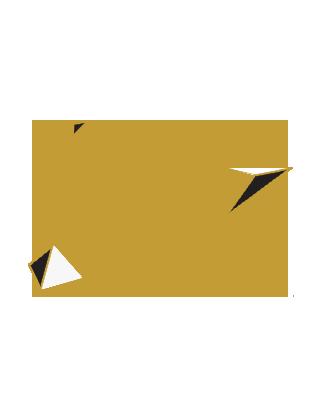 DESIGN WEB ADD ON 2xGld,wht.png