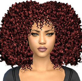 Amma.Hair.Brandysims 7.png