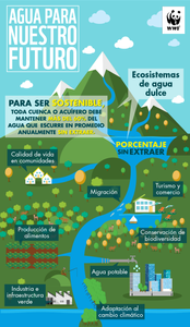 Infografía agua para nuestro futuro