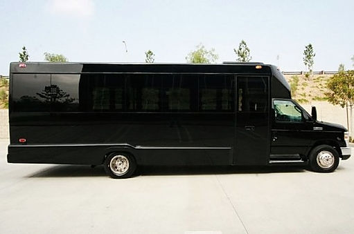 Party bus Red Deer 20  passenger limo bus