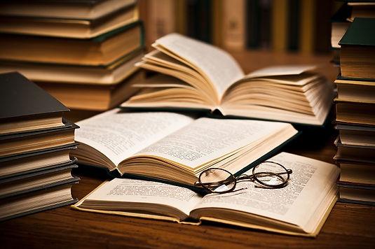 Læserne mener - boganmeldelser - profetens dagbog - guddommelige profetier - Julien C. H. Andersen