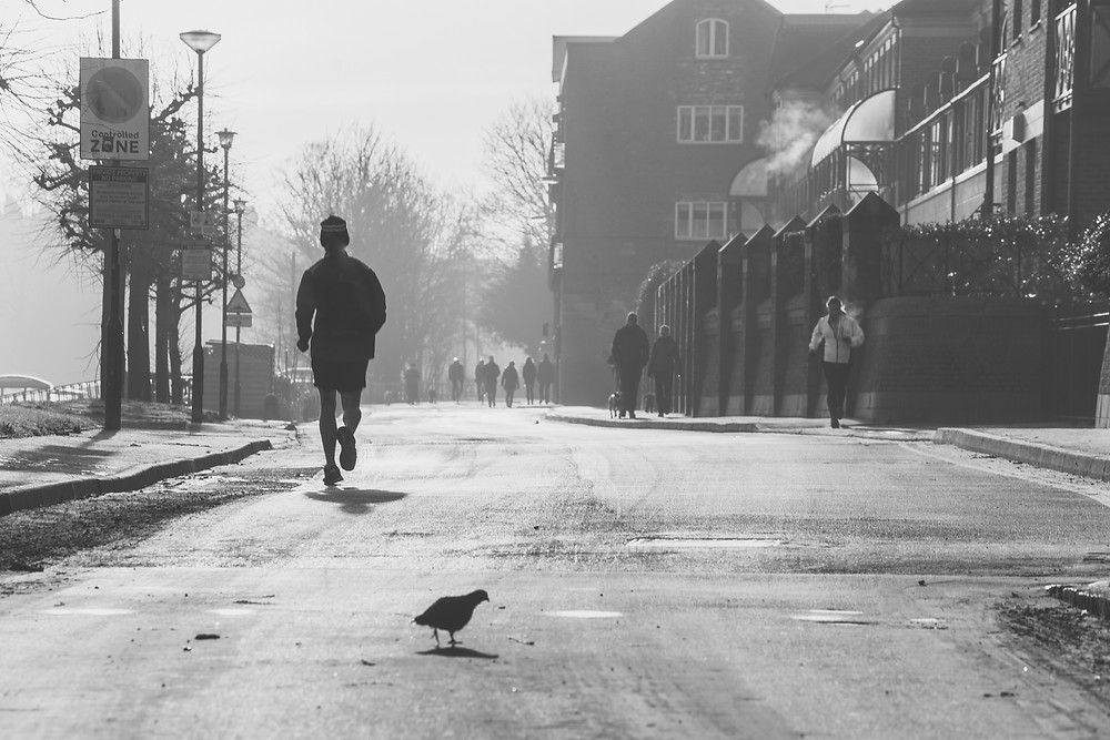 A jogger and pigeon in York, Chilling
