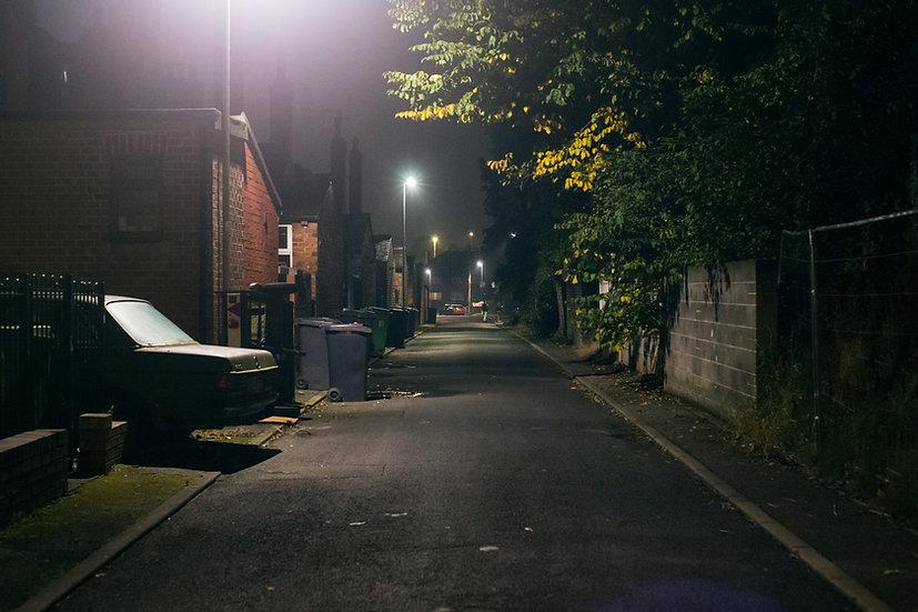 Premium Quality Art Print |  LS7 Alley  | Yorkshire Photo Restoration