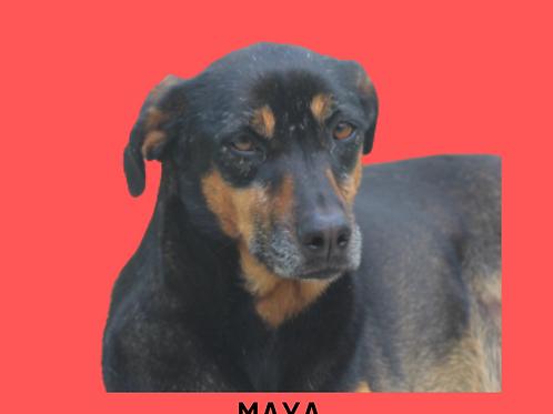 Maya-mel