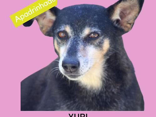 Yuri-nina