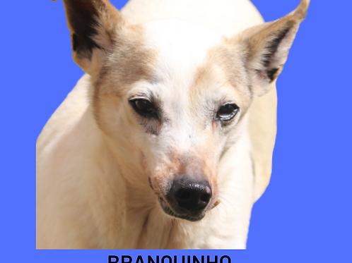 Branquinho-parelheiros