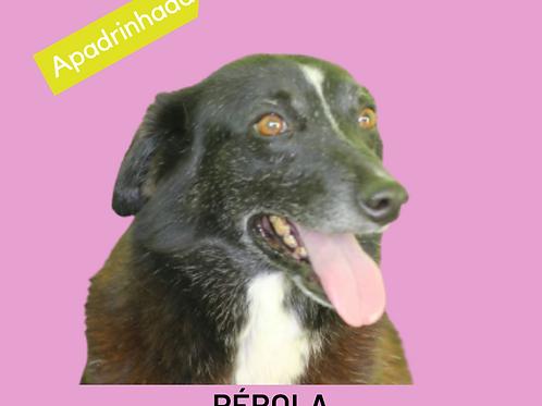 Pérola-duka