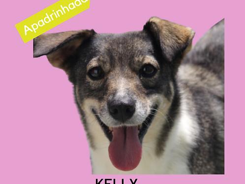 Kelly-raposo