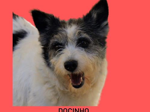 Docinho-Sr. Claudio
