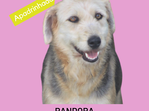 Pandora-300 Anjos