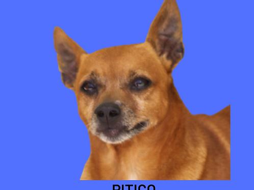 Pitico-Sr. Claudio