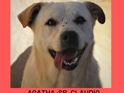 Agatha-Sr. Claudio