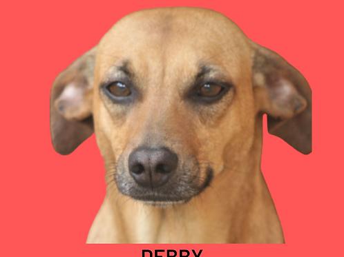 Debby-caucaia